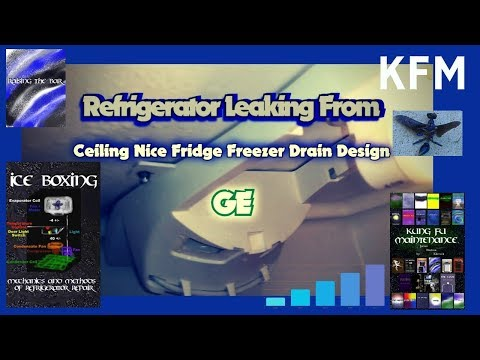 refrigerator-leaking-from-ceiling-nice-fridge-freezer-design-ge