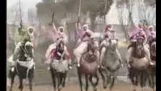 REGGADA  et  FANTAZIA  TALBI ONE ( خيول مغربية)