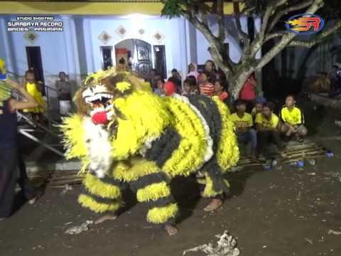 Reog Singo Manunggal ( Barong )