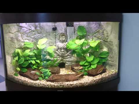 Аквариумы АватарАква производство и продажа аквариумов в