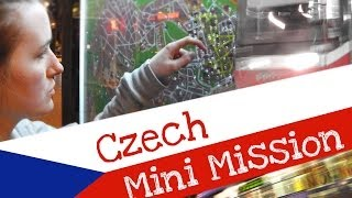 Mini Mission: Czech It Out!║Lindsay Does Languages Video