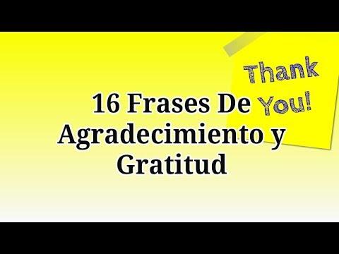 16 Frases De Agradecimiento Y Gratitud Para Dar Las Gracias