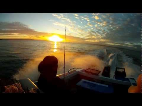 A day on the water - Waitemata Harbour - Auckland