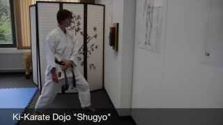 Ki-Karate Makiwara Training