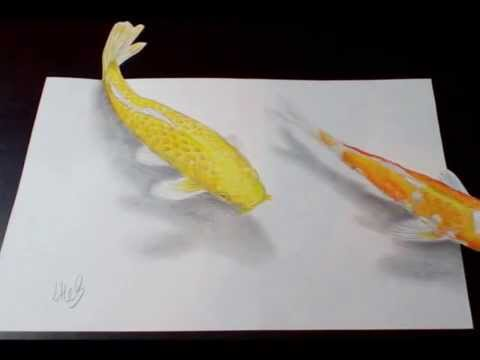 Koi pond 3d illusion drawing of koi carp youtube for Koi fish pond drawing
