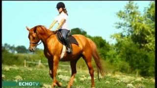 Kincsünk a ló: a lovaglás alapjai - Echo Tv