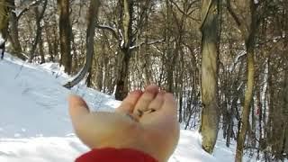 札幌円山(冬) thumbnail