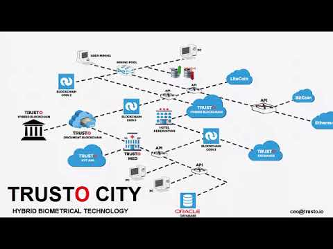 Trusto City of Hybrid Blockchain