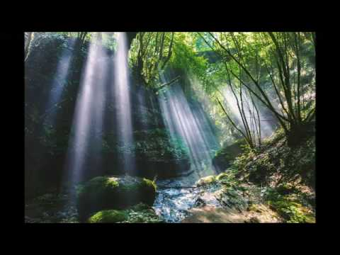 Beautiful classical music to study, relax and sleep soundly