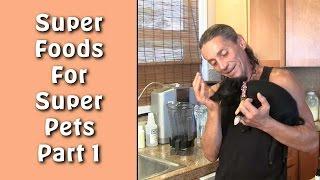 Super Foods For Super Pets Part 1 I Dr. Robert Cassar