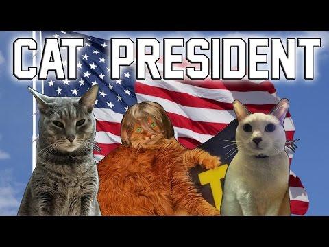 Cat President - A More Purrfect Union - Part 1