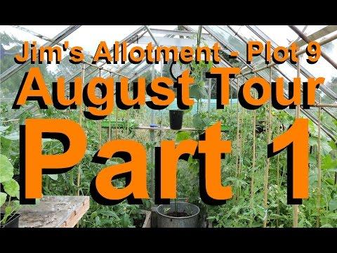 Jim's Allotment - Plot 9 - August Tour Part 1 - Epson Salts, Carrots, Lavender and Chives