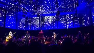 Violent Femmes With The Tasmanian Symphony Orchestra
