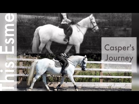 Casper's Journey | This Esme
