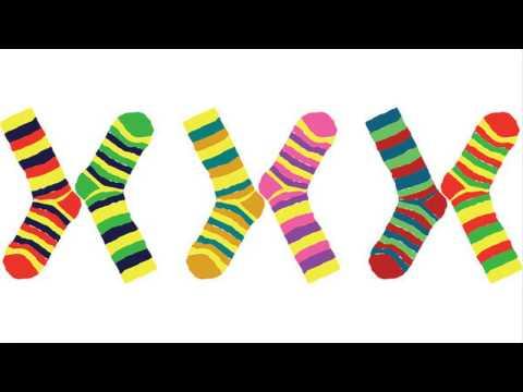 Сколько хромосом у человека? -