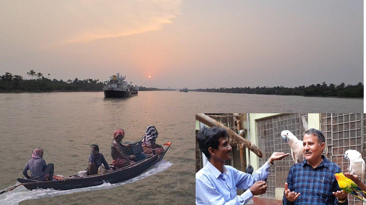 Boundless Beauty of Sundarban By Boat / Beauty Of Birds & Nature.