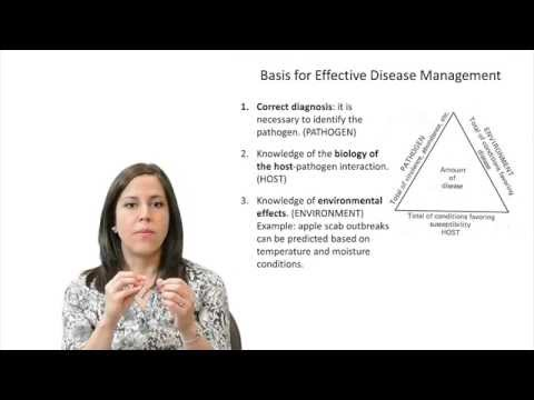 Plant Disease Management Lecture