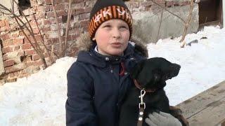 В екатеринбургском приюте для собак и кошек прошёл день открытых дверей