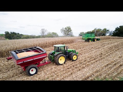 The 40 - Harvesting Corn