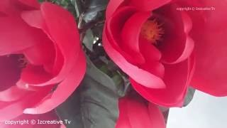 The Most Beautiful Flowers 2016