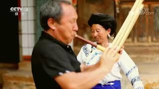 [舞蹈世界]彝族传统民间舞蹈《彝族打歌》 表演:茶春梅 字汝民  CCTV综艺 - YouTube