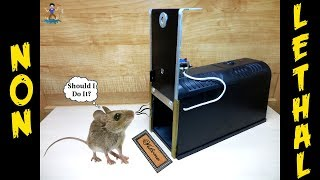 "Homemade NON-LETHAL ""Green"" Electronic Rat/Mouse/Rodent/Lizard Trap"