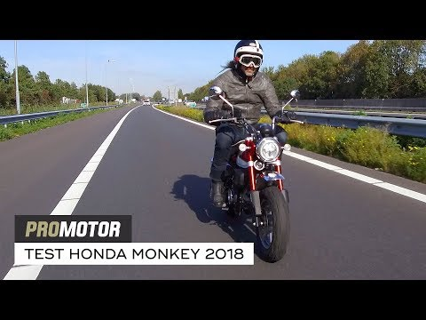 Honda Monkey 2018 - FULL TEST