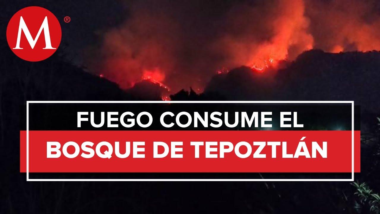 Incendio en bosque en Tepoztlán