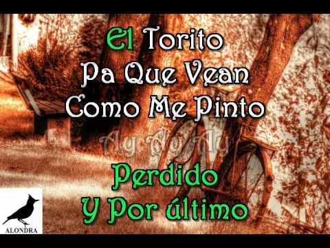 karaoke  El Sinaloense  Luis Perez Meza