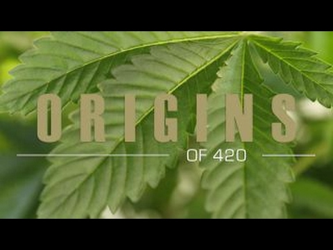 Where Does '420' Come From? The True Story of Pot's Favorite ...