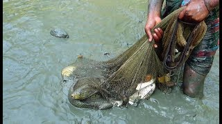 Cast Net Fishing | Catching Lot Of Fish using Cast net by Removing Water from the canal