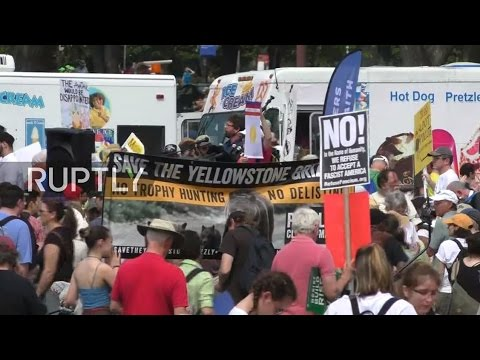 LIVE: People's Climate March takes place in Washington DC