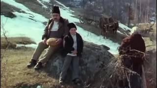 Lumina palida a durerii 1979 film romanesc full