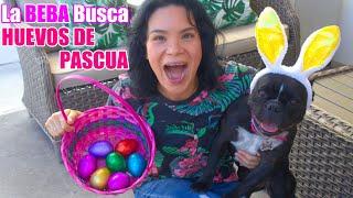 LA BEBA BUSCA HUEVOS DE PASCUA   AnaNana TOYS