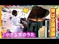 【映画公開】小さな恋のうたをヤンキーがガチで弾いてみたww(MONGOL800/street piano performance in station):w32:h24