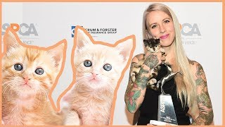 kitten-lady-aspca-cat-advocate-of-the-year