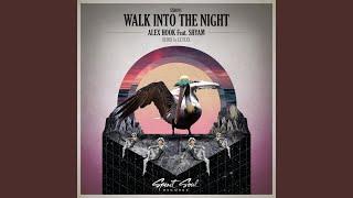 Walk Into The Night Le Flex Remix