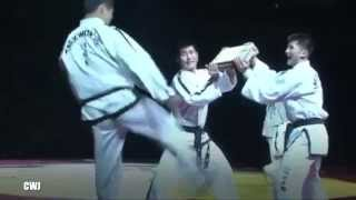 INTERNATIONAL TAEKWON DO FEDERATION