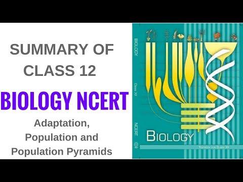 Summary of Biology NCERT Class 12- Adaptation, Population and Population Pyramids thumbnail