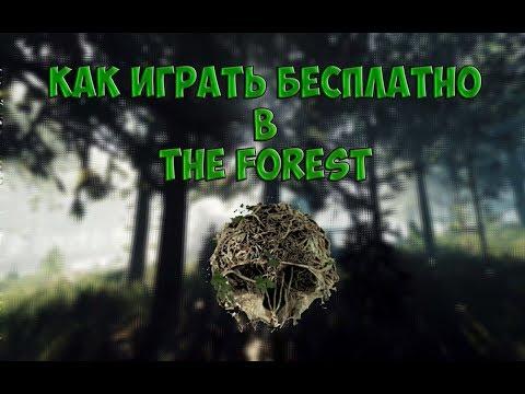 Как играть с другом в The Forest на пиратке