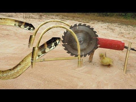 Easy Snake Trap Using Wood Cutting Machine - Simple DIY Creative Snake Trap That Work 100%