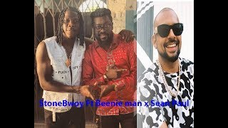 Wow..Stonebwoy Features Beenie Man and Sean Paul and How they Party Hard in Jamaica