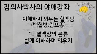 이해하며 외우는 혈액암 1.혈액암(백혈병, 림프종)의 …