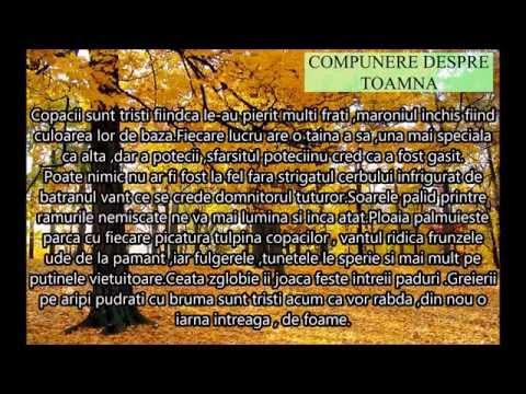 Compunere Despre Toamna