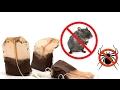 Mengejutkan ! Inilah Cara Mengusir Tikus Di Dalam Rumah Dengan Kantung Teh