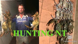 GIANT MUD CRABS Catch And Cook