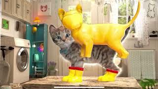 My Favorite Cat Little Kitten Adventure  Play Fun Cute  #141