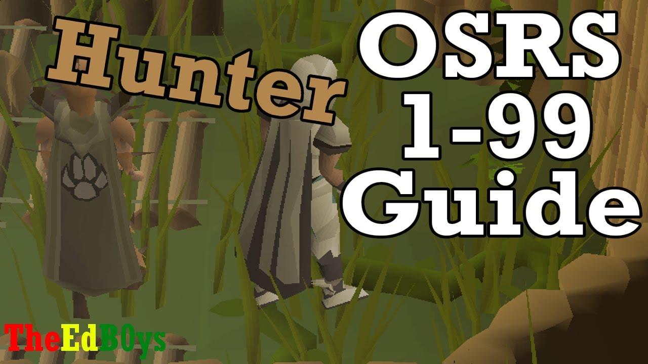 Runescape 2007 1 99 Hunter Guide