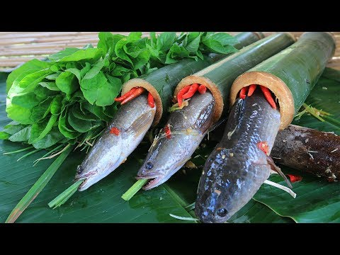 Primitive Technology: Cooking Fish in Bamboo