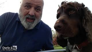 Charlie & Me revisit Camac Valley & take a walk around Corkagh Park next to the campsite